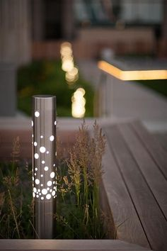backyard lighting trends